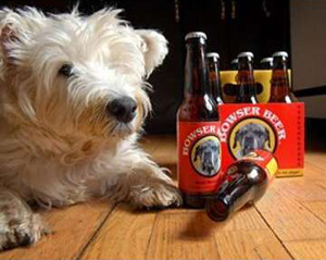 No alcoholic drinks for dogs!