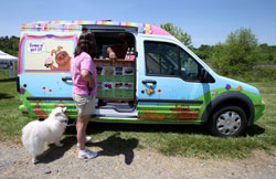 ice-cream-for-dog